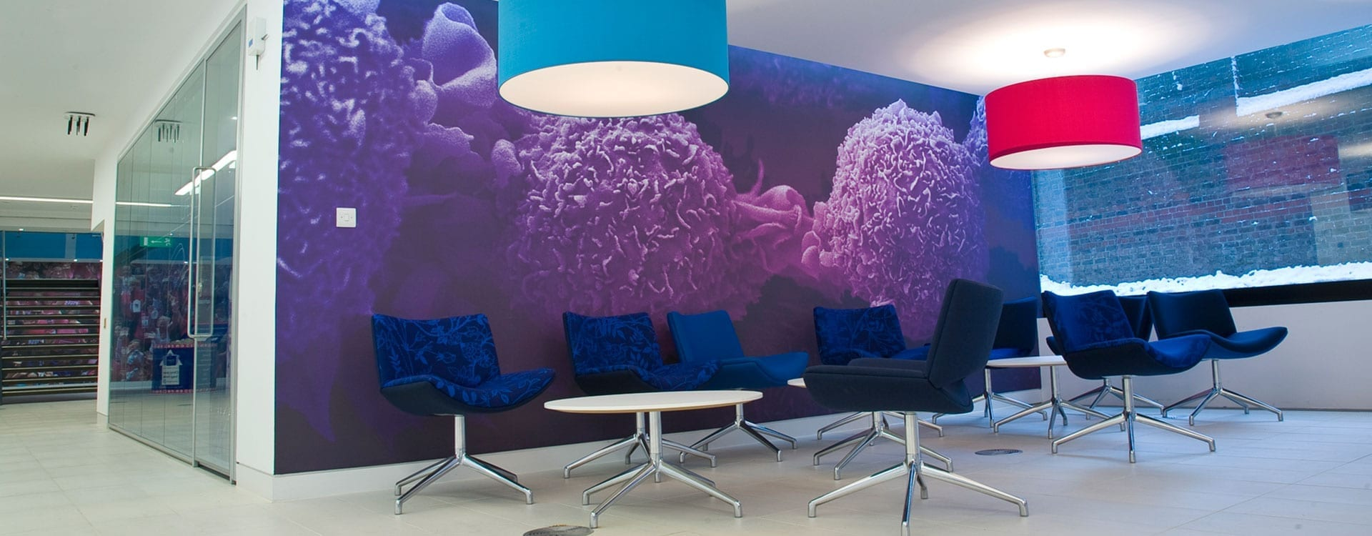 Inspired large format wall graphic bringing colour to office areas